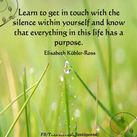 get in touch with silence within self.jpg